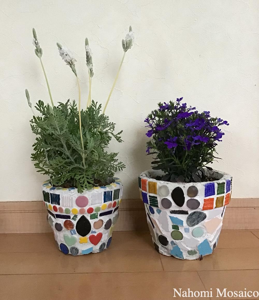 完成写真>GW外遊び!庭で作って楽しむ植木鉢モザイクアートWS